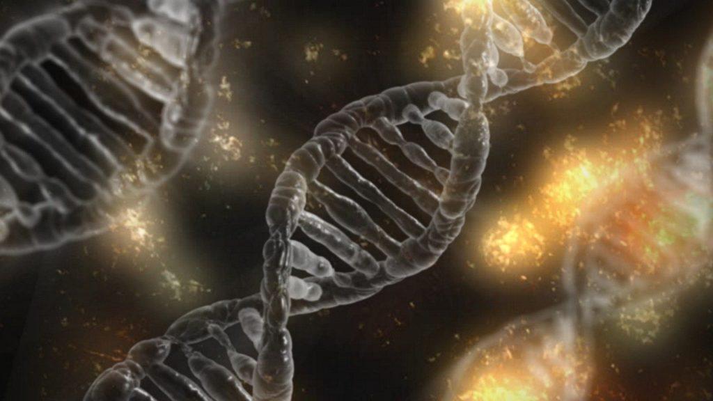 símbolo do DNA especiação