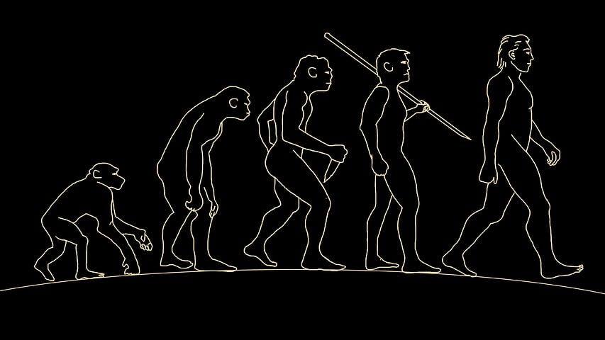 Antropologia Estrutural - I | Claude Lévi-Strauss