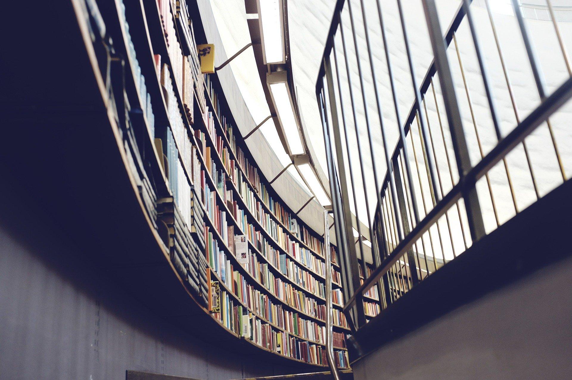 Universidade particular: conheça as principais formas de ingresso