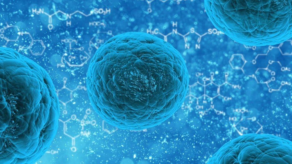 célula azul ciclo celular o que é
