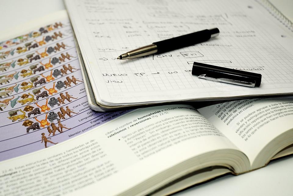 caneta livro treineiro enem