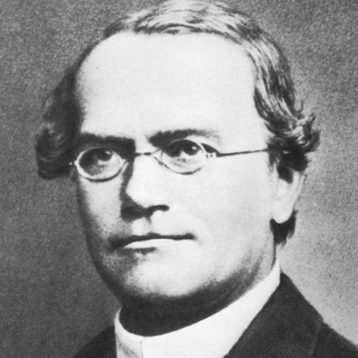 Gregor Mendel: quem foi, biografia e mais!
