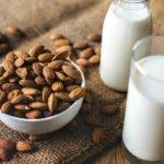 leite lipídos