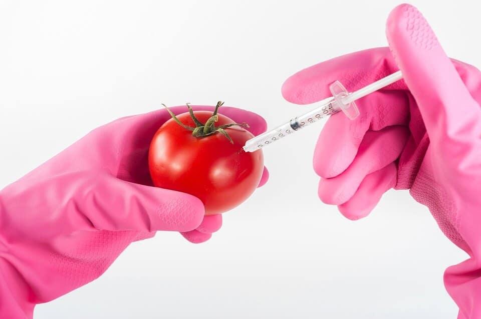 maça biotecnologia