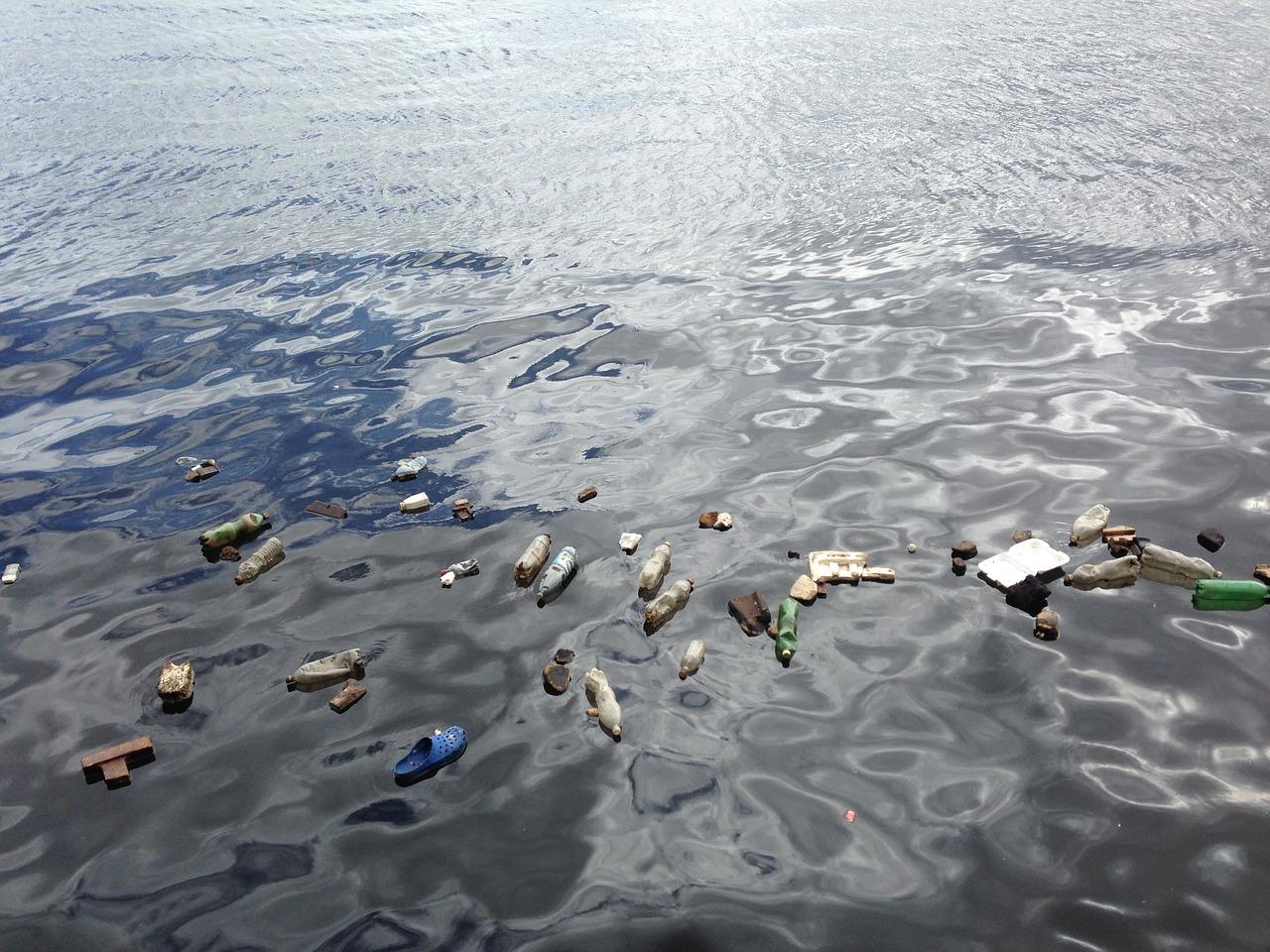Poluição da água: causas e consequências