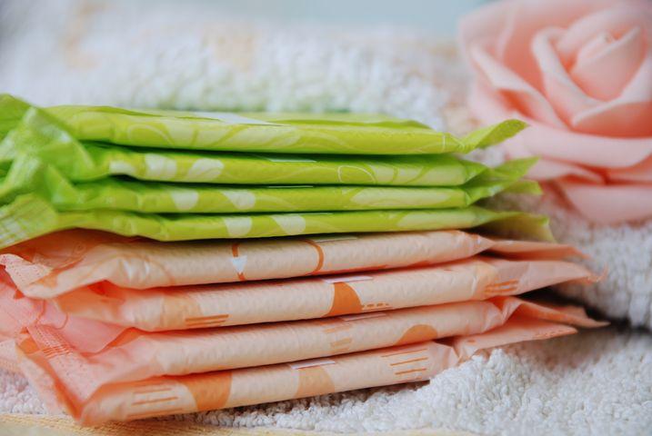 absorvente ciclo menstrual